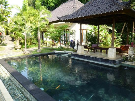 Beji Ubud Resort: Small pool near our room - larger pools available