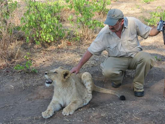 Lion Encounter: Yes. that's the spot