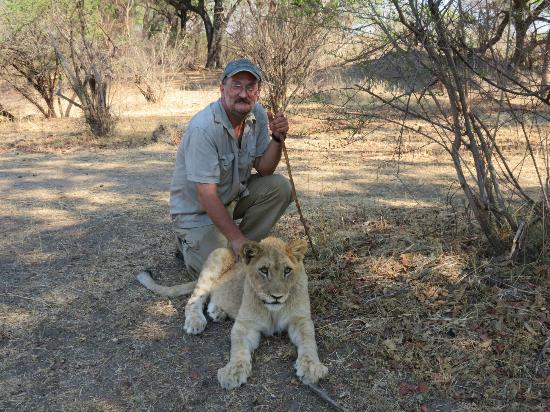 Lion Encounter: A lot of hands on time