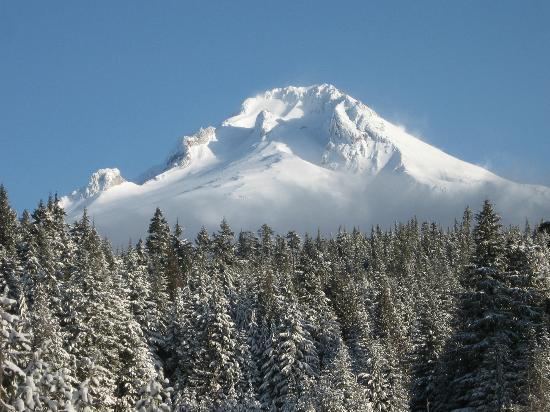 Summit Meadow Cabins: Mt Hood w/ fresh snow