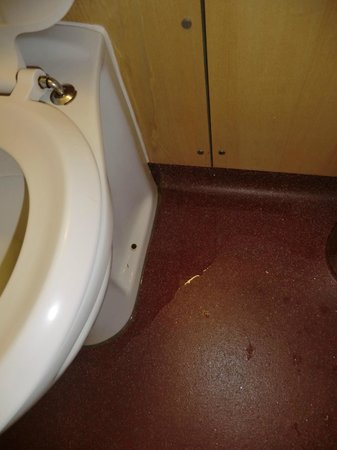 The Wilmslow Lodge: Leak