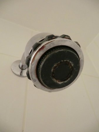 The Wilmslow Lodge: Mouldy shower head