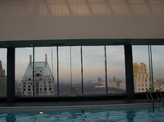 Le Parker Meridien New York: Rooftop pool - looking north toward Central Park