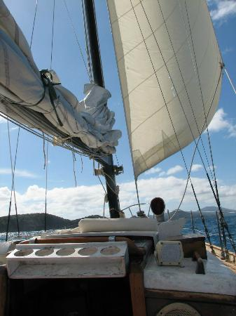 Morningstar Sailing and Power Charters: blowin in the wind