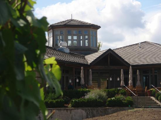 Adelsheim Vineyard: View of our patio tasting area
