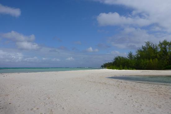 The Retreat at Rum Point: Beach South of Rum Point