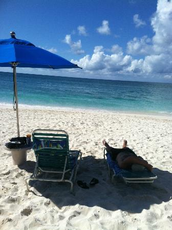 Cayman Reef Resort: beach lounges and umbrellas provided