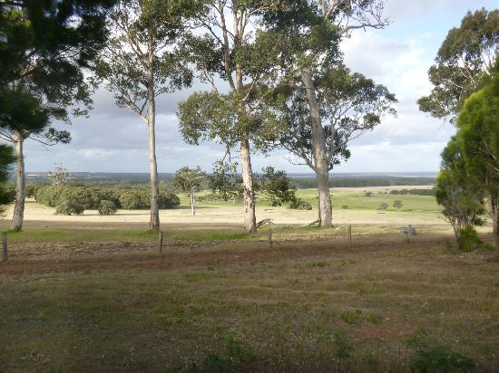 Augusta Sheoak Chalets: The View