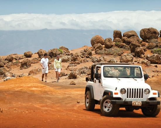 Four Seasons Resort Lana'i, The Lodge at Koele: 4x4 Off-road excursion to Garden of the Gods