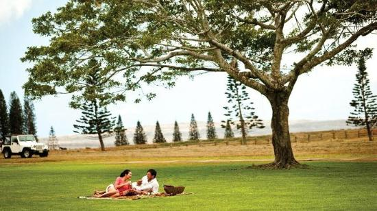 Four Seasons Resort Lana'i, The Lodge at Koele: Romantic gourmet picnic at Four Seasons