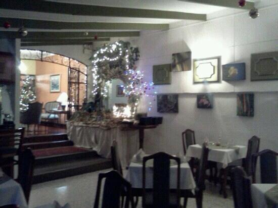 Hotel Le Bergerac: restaurant