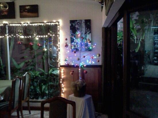 هوتل لو بيرجيراك: arbolito navidad 