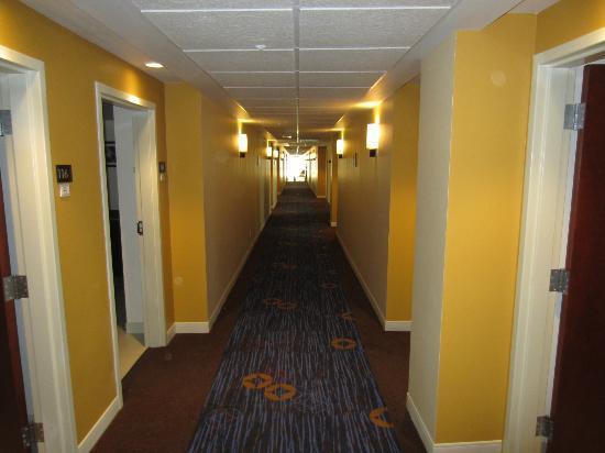 Courtyard Toluca Tollocan: guest hallway