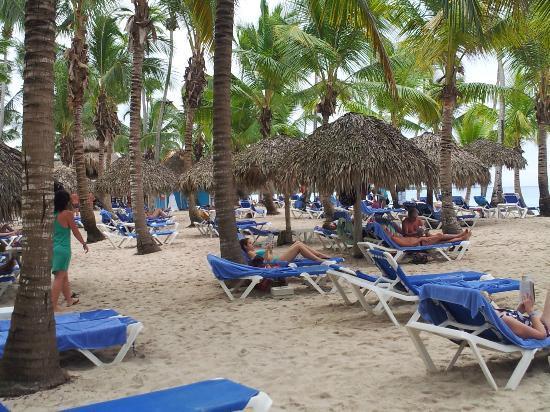 Catalonia Gran Dominicus: Vacaciones en Hotel Catalonia Dominicus