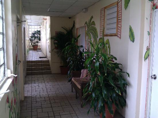 Villa Cofresi Hotel : One of the colorful tropical hallways