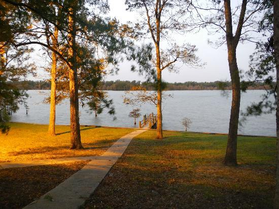 Lake Chicot State Park: View from our Cabin