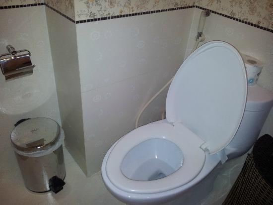 Roseland Point Hotel: Toilet