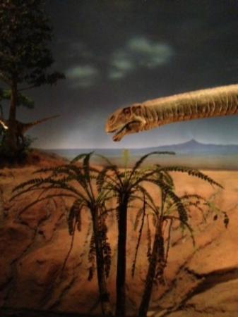 Kitakyushu Museum of Natural History & Human History: 恐竜の世界の再現