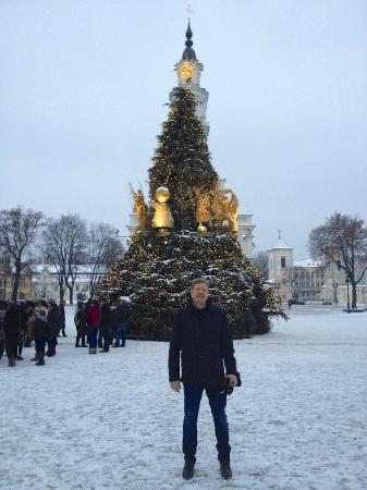 Hotel Metropolis : Christmas Tree Kaunas
