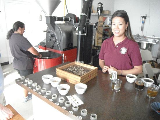 Hula Daddy Kona Coffee: Tour guide was knowlegable and very helpful. Employees were smiling and busy with Xmas orders.