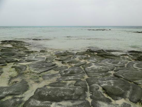 Ojima Coast : 奥武島畳石 奇石群