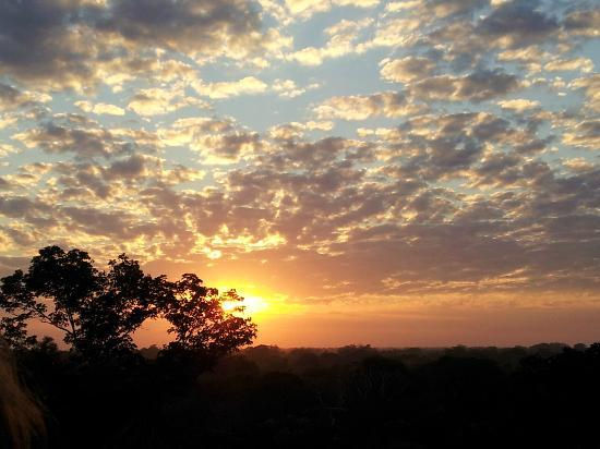 Refugio Amazonas: Sunrise from the Tower