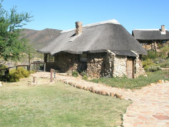 Aquila Private Game Reserve: Family Lodge