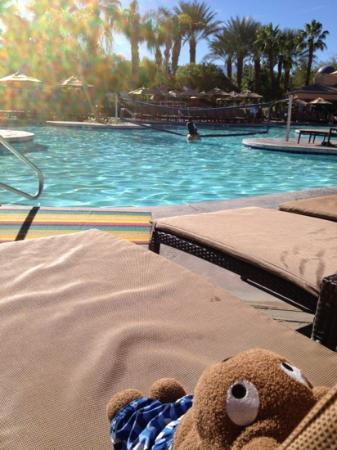 Westin Mission Hills Golf Resort & Spa: relaxing by the pool