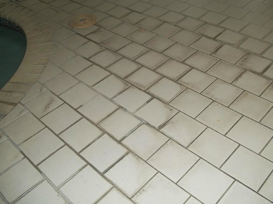 Comfort Suites: SLIMY SLIPPERY DIRTY TILES-not cleaned 2 days