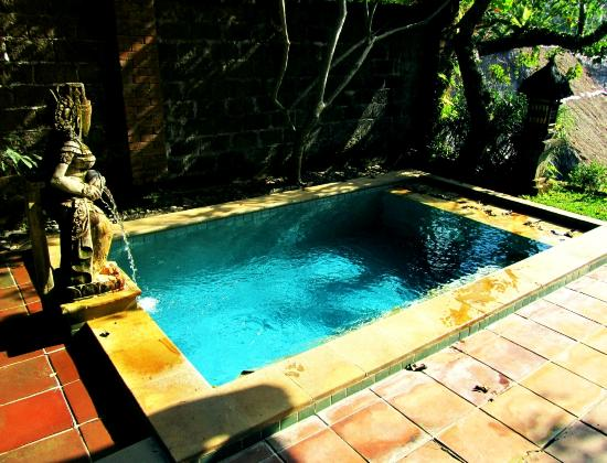 Natura Resort and Spa: plunge pool