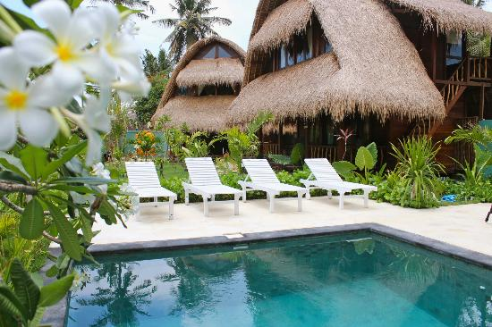 Tigerlillys Boutique Hotel: relax poolside amongst the lush garden