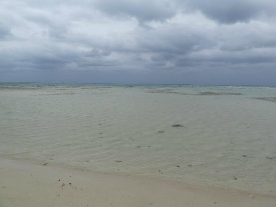 Eef Beach: 遠浅の綺麗なビーチ
