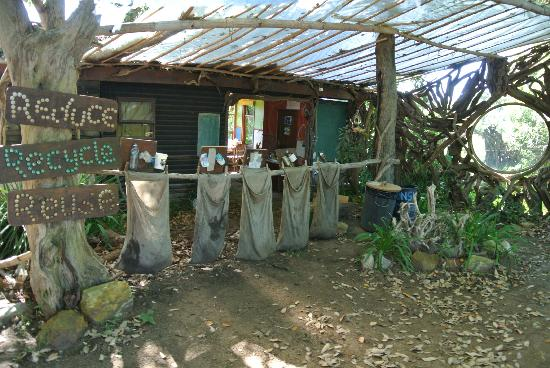 Wild Spirit Lodge and Backpackers: Recycling area