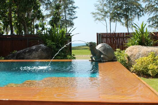 JW Marriott Phuket Resort & Spa: Private pool outside our villa