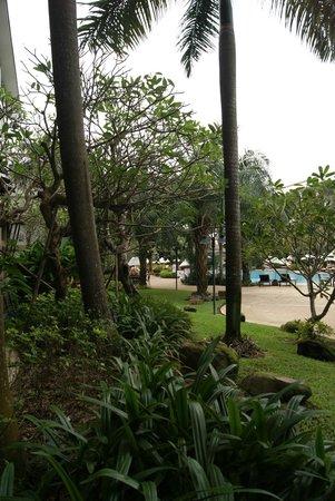 Ravindra Beach Resort & Spa: Уголок территории отеля