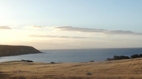 وايفز آند وايلدلايف: stunning view across the bay 