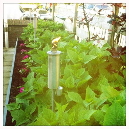 Hotel Doppenberg: garden