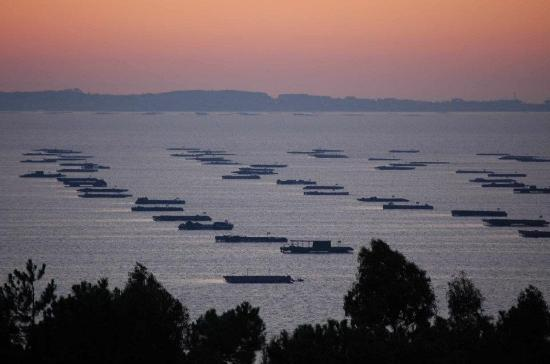 Cruceros Rias Baixas: Panorámica ría de Arousa
