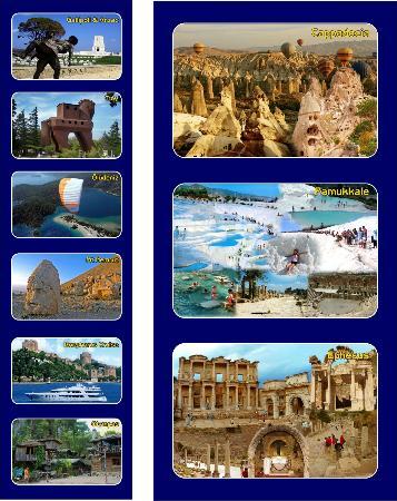 Bonita Tours - Day Tours: Bonita tour office