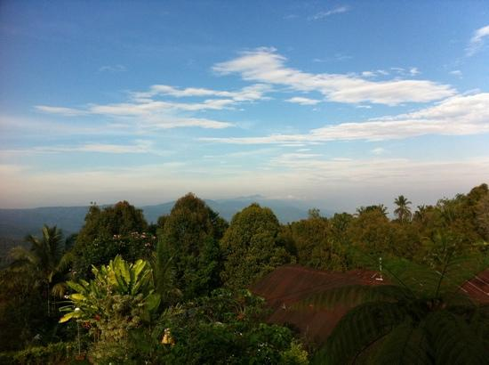 Karangsari Guest House: view from our balcony