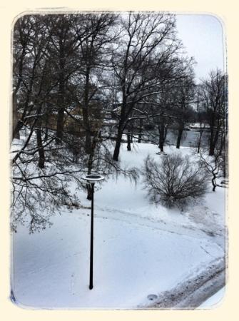 Restaurant Långa Raden: view from my window