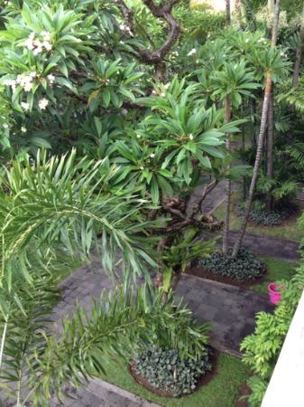 هوتل بوري راجا: well maintained gardens 
