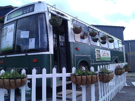 Lye Cross Farm Bus Cafe: Dorothy the Food Hut Bus in Spring