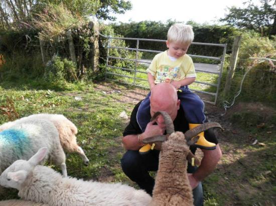 Knockaloe Beg Farm: me and the boo