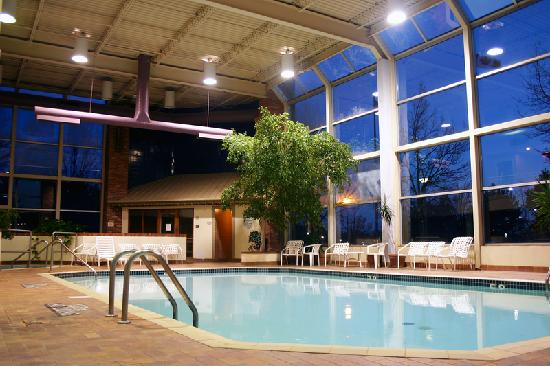 Howard Johnson Inn and Suites Toronto East : Indoor Pool