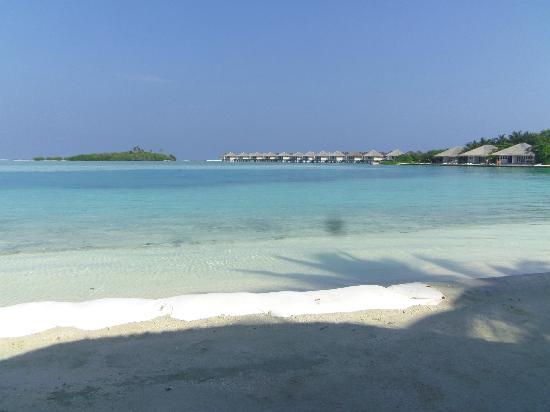 Cinnamon Dhonveli Maldives: lagon