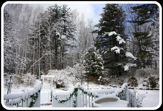 The Clarke House Bed & Breakfast: snow scene from our deck