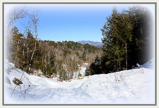 The Clarke House Bed & Breakfast: Snow trails for snow shoeing