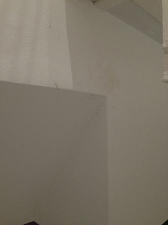 博斯科洛公寓照片