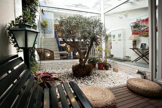 Gallery Hostel: The beautiful winter garden with our 45 years old olive tree